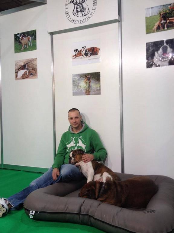 messen club f r olde bulldogges in deutschland cobd e v. Black Bedroom Furniture Sets. Home Design Ideas